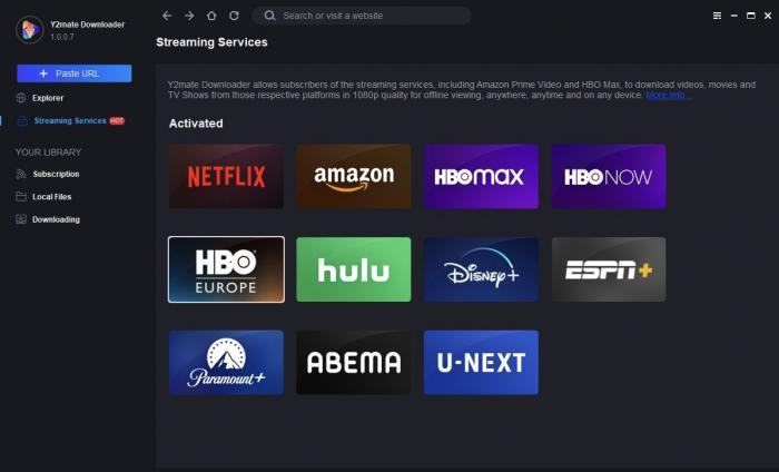 Netflix service